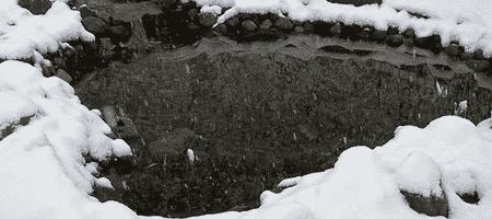 20131115_winter_vijver